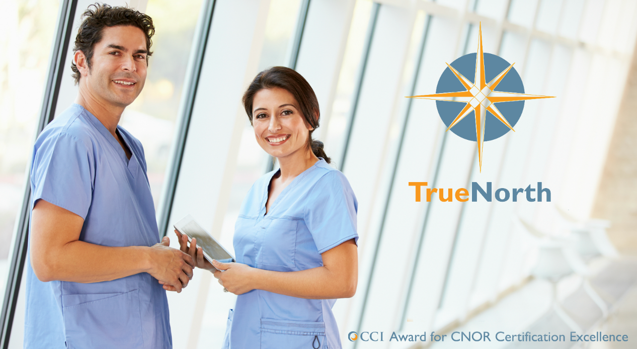 TrueNorth Award Application: The Best Advice